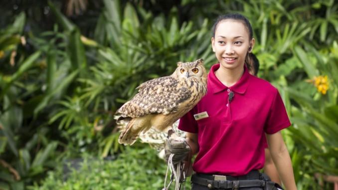 jurong-bird-park-singapur