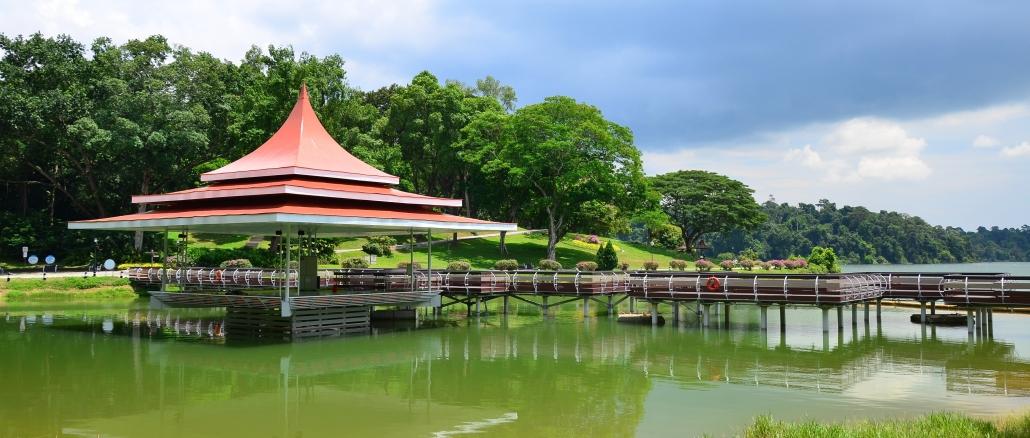 macritchie-reservoir-singapore