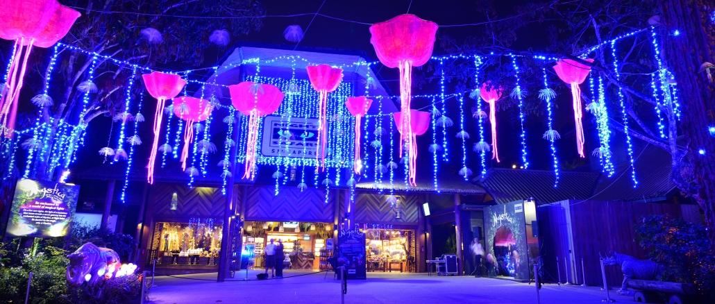 night-safari-singapore-zoo