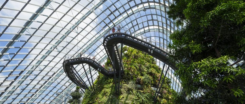 Cloud Forest in Singapur ist ein Erlebnis