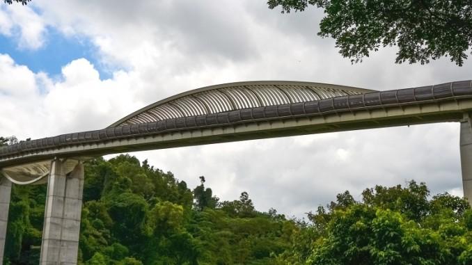 henderson-wave-bridge