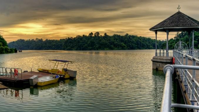 macritchie-reservoir-singapur