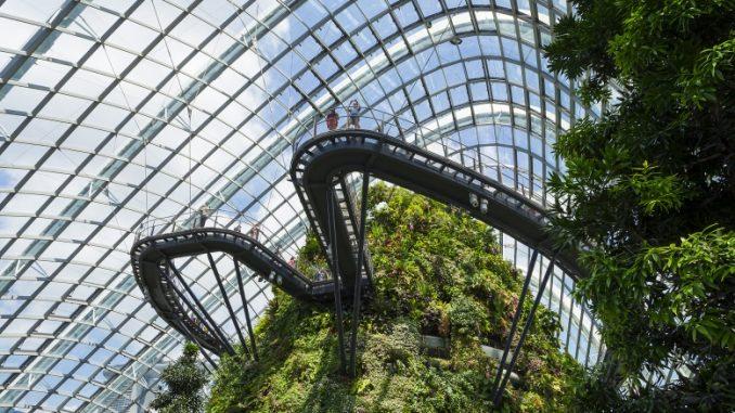 cloud-forest-singapur